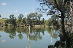 Burnett River - South Kolan, Qld, Australia