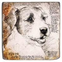 Studio Vertu The marble coaster from the Leonardo's Dogs Collection features designs mimicking Da Vinci sketches ($48, set of four). Featured in the July 2013 issue of Home Accents Today.