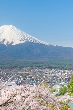 12 Life-Changing Lessons Learned in Japan