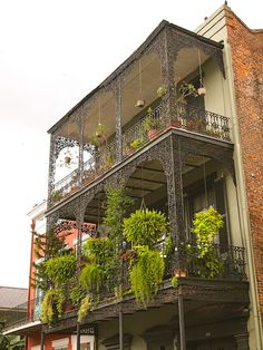 Balcony Garden by pobrecito33, via Flickr