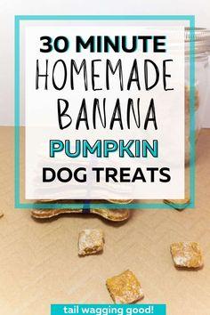 Easy to make Homemade Banana Pumpkin Dog Treats. Homemade Dog Cookies, Homemade Dog Food, Easy Dog Treat Recipes, Dog Food Recipes, Make Dog Food, Sweet Potato And Apple, Pumpkin Dog Treats, Dog Nutrition, Dog Biscuits