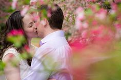 Spring engagement photos with cherry blossoms at Meadowlark Gardens in Vienna VA | Kelly Ewell Photography