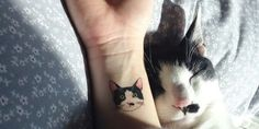 These Korean Cat Tattoos Are Perfectly Adorable