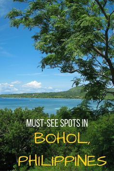 Heading to the beautiful island of Bohol in the Philippines? Here are the must-see travel spots! Voyage Philippines, Visit Philippines, Bohol Philippines, Philippines Beaches, Philippines Travel, Vietnam, Stuff To Do, Things To Do, Philippine Holidays