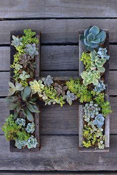 Jar je už pomaly tu a je to ideálny čas pre rast rastliniek. Ak žijete v byte s balkónom alebo v dome bez veľkej záhrady, je tu riešenie ako ušetriť priestor a vytvoriť si záhradku aj v malom priestore. Riešením sú vertikálne záhrady.