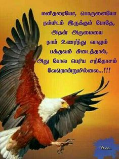 Qoutes, Me Quotes, Tamil Motivational Quotes, Unique Quotes, Picture Quotes, Positive Quotes, Positivity, Facts, Indian