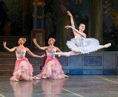 Amazing+boston+ballet | Growth: Boston Ballet principal Ashley Ellis talks about dance ...