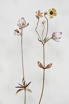 anne-ten-donkelaar-flower-constructions-9