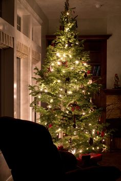 How to capture the Twinkling Tree Lights