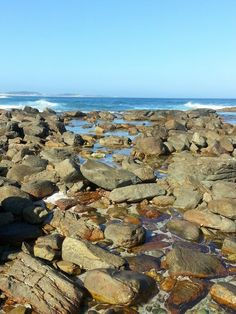 Rock Pools. Cape St Francis.  South Africa.