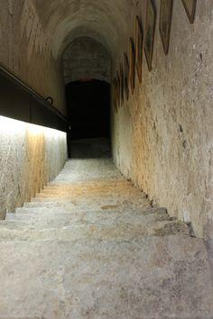 """Bajada a los sótanos de """"la casona"""""""