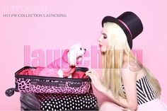 Launching Puppy Angel Collection FW1415