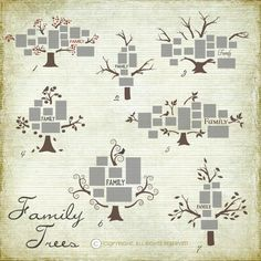 Family Wall Vinyl Decal Trees - Choose your style and contact us for more info! Family Tree Photo, Photo Tree, Family Trees, Family Tree Layout, Family Tree Decal, Wall Decals, Wall Art, Wall Vinyl, Wall Stickers