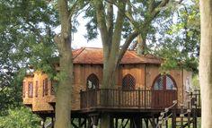 We would like a tree house.