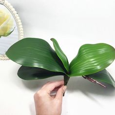 2016 new Artificial flower Orchid leaveshigh quality PU gluing texture leaves DIY potted flower arrangements-in Decorative Flowers & Wreaths from Home & Garden on Aliexpress.com   Alibaba Group