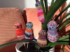 Knitted birds.