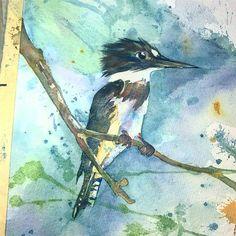 2015 Nancy Murphree Davis nmdART.com Kingfisher, Watercolor, Bird, Portrait, Artwork, Instagram Posts, Painting, Animals, Image