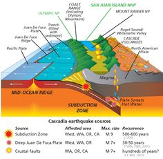 The Cascade Subducdtion Zone, showing the location of the trench, the downgoing slab, the active volcanoes and some major earthquakes.