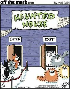 Haunted house...so scary it will make your hair stand up!