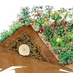 Un pas à pas en images pour réussir la culture d'un potager sur butte. Potager Bio, Potager Garden, Organic Gardening, Gardening Tips, Urban Gardening, Kitchen Gardening, Fairy Gardening, Permaculture Design, Permaculture Butte