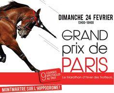 http://pegasebuzz.com/leblog | Horse in Advertising for Hippodrome Paris-Vincennes : Grand Prix de Paris 2013