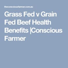 Grass Fed v Grain Fed Beef Health Benefits |Conscious Farmer