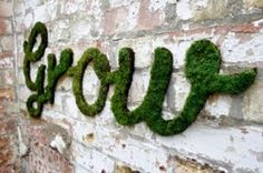 How to Make Moss Graffiti. Creating living, breathing moss graffiti is an eco-friendly and exciting way to make art! Also called eco-graffiti or green graffiti, moss graffiti replaces spray paint, paint-markers or other such toxic. Outdoor Wall Art, Outdoor Walls, Outdoor Living, Outdoor Spaces, Cool Diy Projects, Garden Projects, Project Ideas, Garden Ideas, Art Projects