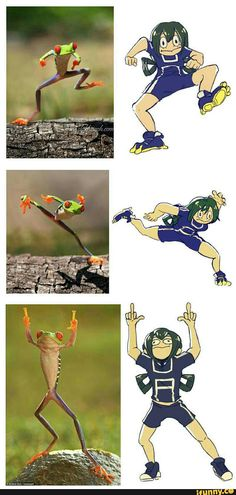 bokunoheroacademia, funny, tsuu, frog