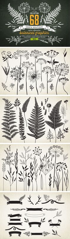 Botanical element illustrations… *IDEA* try printing to give a sense of surroundings? or layering in lively scrapbook format? Botanical element illustrations… *IDEA* try printing to give a sense of surroundings? or layering in lively scrapbook format? Zentangle, Illustration Botanique, Botanical Illustration, Pattern Illustration, Technical Illustration, Tattoo Illustration, Doodles, Botanical Art, Graphics