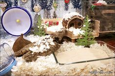 Scroll down for post of Biscotti's Winter Wonderland themed hamster cage... so cute!