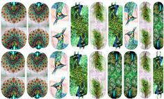 Peacock Love (mixed mani) Jamberry Nail Art Studio: The most regal of all birds, ready to grace your fingers with this beautiful plumage.