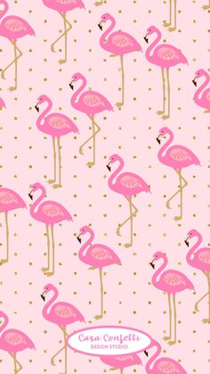 Pink Flamingo Wallpaper, Pink Wallpaper Iphone, Apple Wallpaper, Pink Iphone, Cellphone Wallpaper, Wallpaper Backgrounds, Flamingo Rosa, Whatsapp Wallpaper, Flamingo Pattern