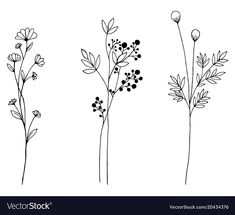 Hand drawn of vector vintage flowers elements isolated on white background. - Hand drawn of vector vintage flowers elements isolated on white background. Down… Hand drawn of vector vintage flowers elements isolated on white background. Botanical Line Drawing, Floral Drawing, Simple Flower Drawing, Drawing Flowers, Beautiful Flower Drawings, Simple Flower Tattoo, Flower Tattoo Drawings, Plant Drawing, Painting Flowers