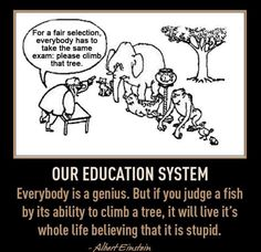 Photo: Our Education System...