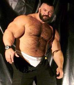 Huge Hairy Bears