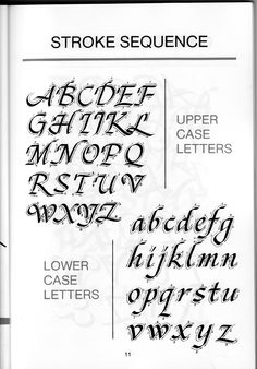 calligraphy instruction manual rapidshare basic instruction manual u2022 rh winwithwomen2012 com
