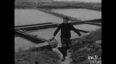 Film Oléron 1970 . Ostréiculture en face de l'île d'Oléron , 01 janv. 1970 01min 41s. [Image amateur].Vues de plusieurs bateaux d'ostréiculteurs à marée basse en face de l'île d'Oléron. Vue sur le pont de l'île d'Oléron et du fort Louvois. http://www.ina.fr/video/I13329185/ostreiculture-en-face-de-l-ile-d-oleron-video.html