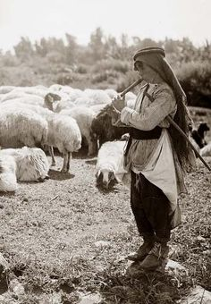 An Arab shepherd boy plays his flute to while away the time as he tends his flock, c. 1898