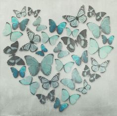Butterfly Love Teal Superfoil Canvas