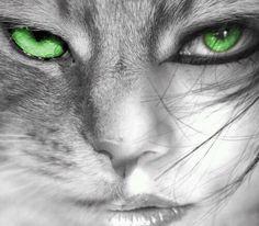 Half cat, half Girl