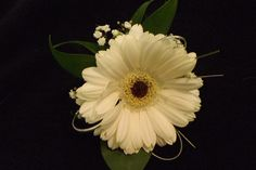 germini buttonhole www.weddingflowersbylaura.com