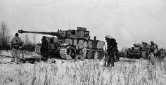 Tiger of the 502nd Battalion at Leningrad