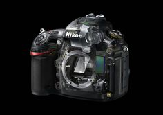 Rumors: Nikon D800S to Replace both D800 and D3X instead of Nikon D4X | Camera News at Cameraegg