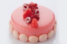 Sei un pasticcere e desideri affinare le tue competenze? Christophe Declercq ti svela come preparare una torta alla panna montata molto trendy.