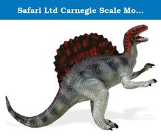 Safari Ltd Carnegie Scale Model Spinosaurus. Longer than Tyrannosaurus rex, Spinosaurus is the largest predatory dinosaur known to science. It is best known for the tall bony spines on its back and its long, crocodile-like jaws. The first and most complete fossil skeleton of this giant carnivore ever found was discovered in an Egyptian oasis in 1912, and then shipped to a museum in Munich, Germany. Unfortunately, the skeleton was destroyed during a British bombing of Munich during World…