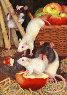 http://www.avrilhaynes.com/assets/images/rats-1344353136.jpg
