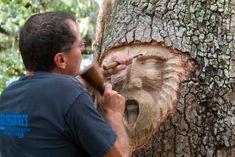 Tree Spirit Carvings by Keith Jennings