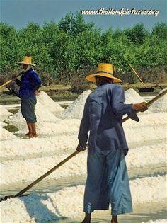 Drying Salt - Thailand