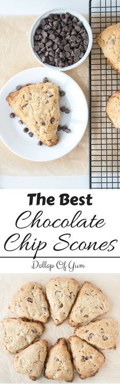 The Best Chocolate Chip Scones! Large, light, and flaky scones packed with melty and rich chocolate chips! Via Dollop Of Yum
