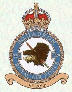 #229 Squadron Air Force Aircraft, Battle Of Britain, Royal Air Force, Crests, Badges, Planes, Respect, British, Military